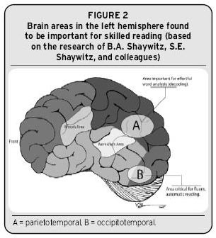 Figure 2 - brain areas in the left hemisphere