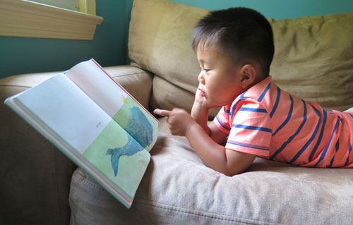 Reading picture books about whales