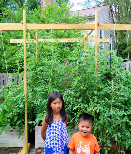 Addie and Taylor with our backyard tomatoes