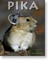Pika: Life in the Rocks