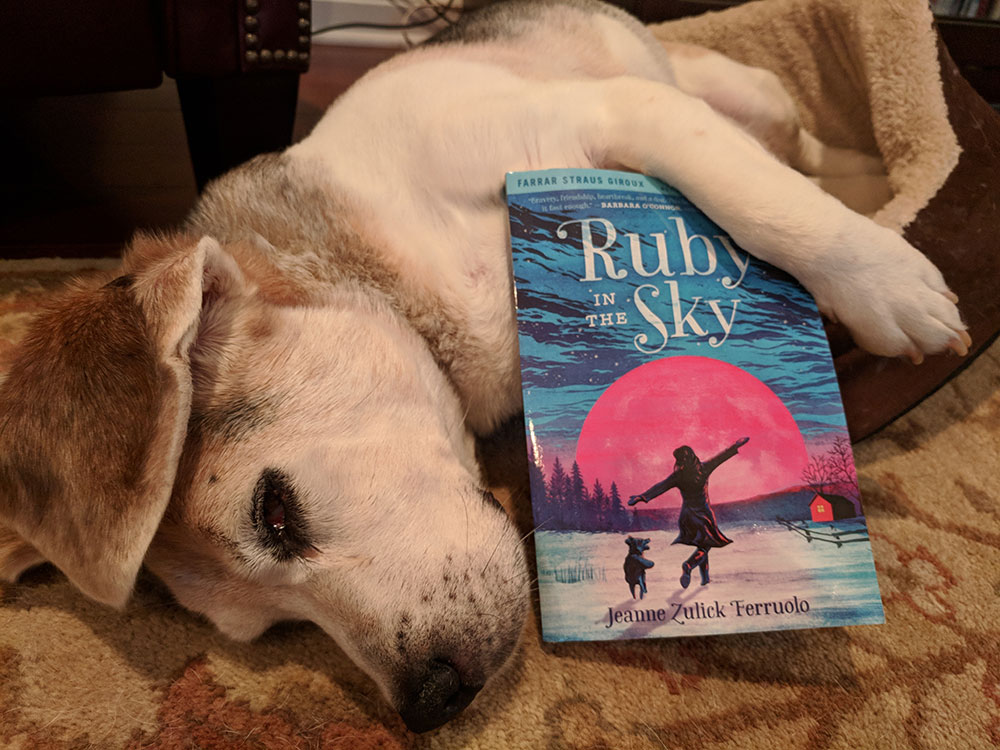 Rudy the dog relaxing on the living room floor with a book