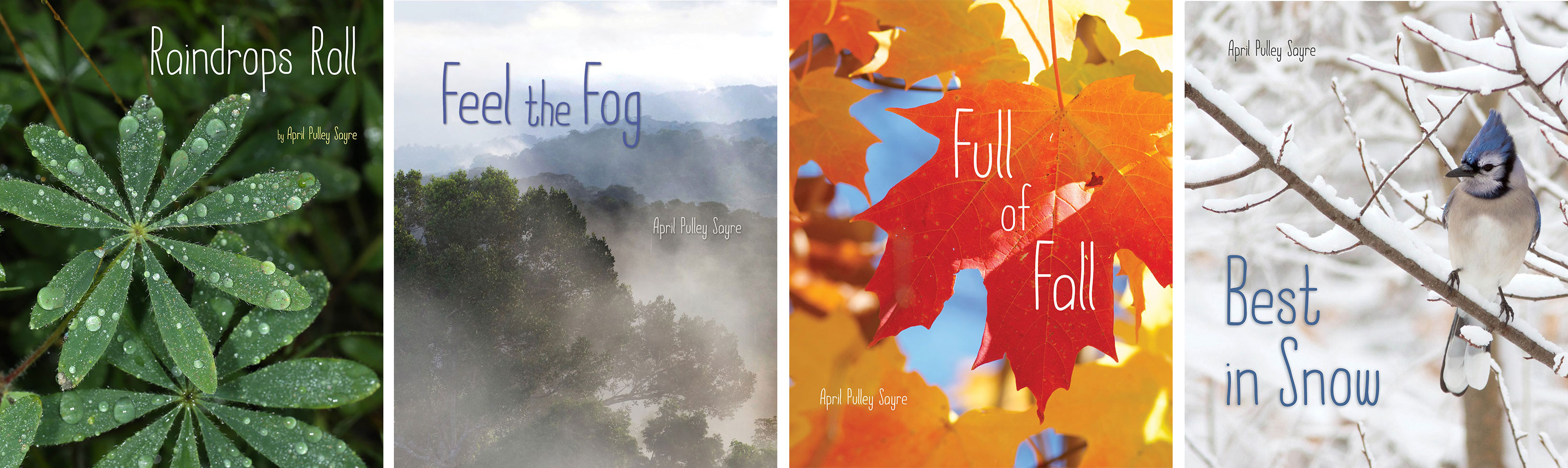 Weather Walks photo books by April Pulley Sayre