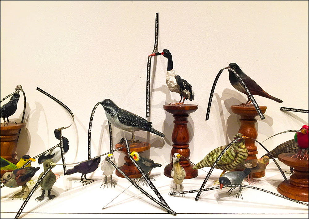 Museum exhibition of birds holding descriptions of their beaks