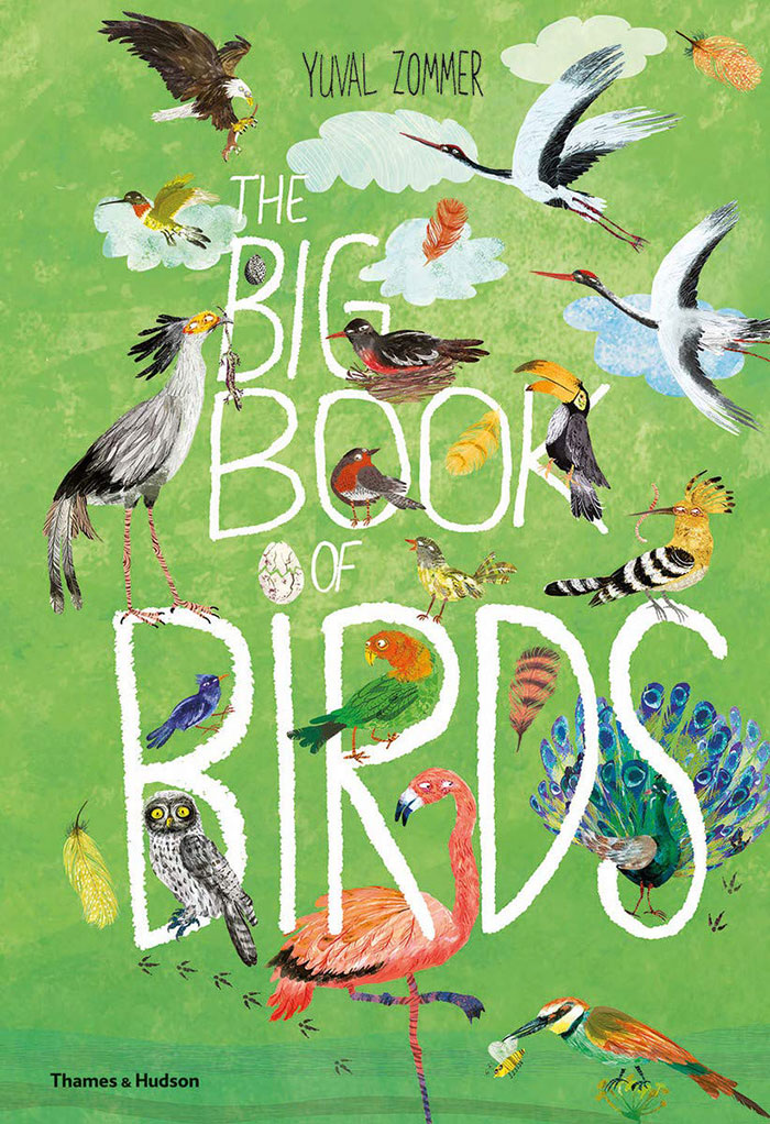 Illustrations of a variety of birds for cover of The Big Book of Birds