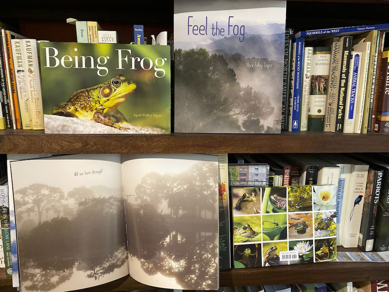 Bookshelf of nature picture books and field guides